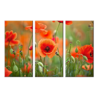 Bead Art Kit - Poppy Flower Triptych