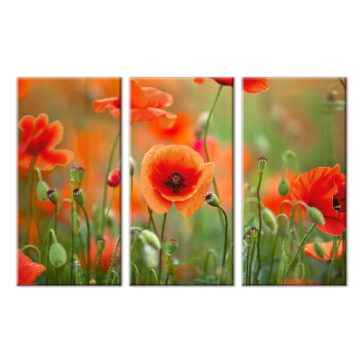 Bead Art Kit - Poppy Flower Triptych
