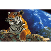 Bead Art Kit - Space Tiger