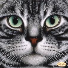 Bead Art Kit - Cat Basalt