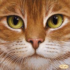 Bead Art Kit - Cat 'Redhead'