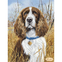 Bead Art Kit - Spaniel