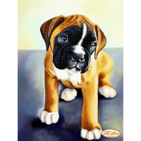 Bead Art Kit - Boxer Puppy
