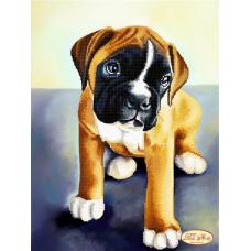 Bead Art Kit - Boxer Puppy