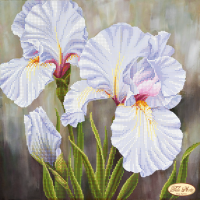 Bead Art Kit - White Iris