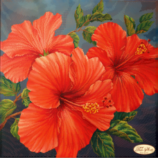 Bead Art Kit - Red Hibiscus