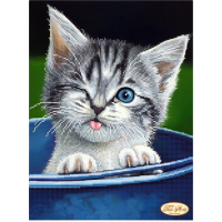 Bead Art Kit - Winking Kitten