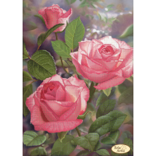 Bead Art Kit - Rose - First Rays