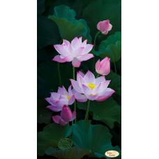 Bead Art Kit - Blooming Lovely
